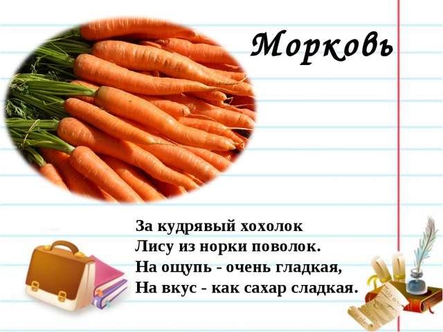 Морковь За кудрявый хохолок Лису из норки поволок. На ощупь - очень гладкая...