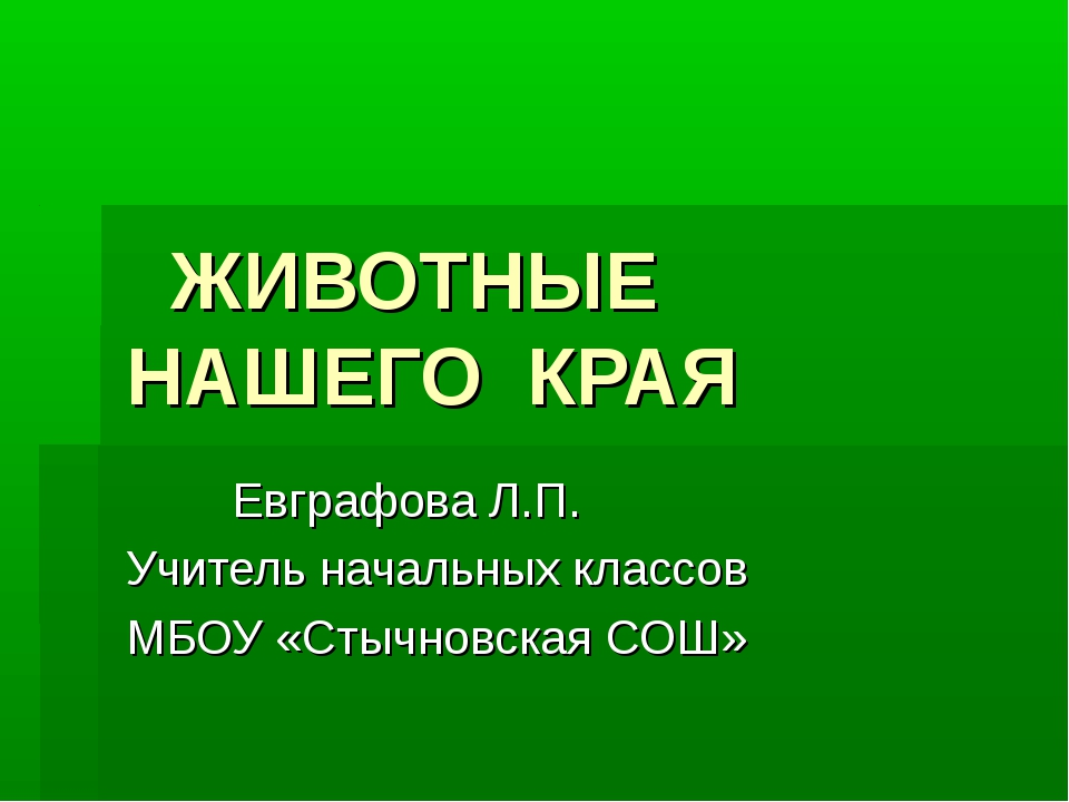 ЖИВОТНЫЕ НАШЕГО КРАЯ Евграфова Л.П. Учитель начальных классов МБОУ «Стычновс...