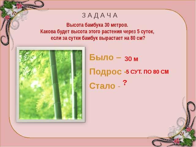 Бамбук – злаковое растение. Приблизительно раз в 50 лет бамбук цветёт и плод...