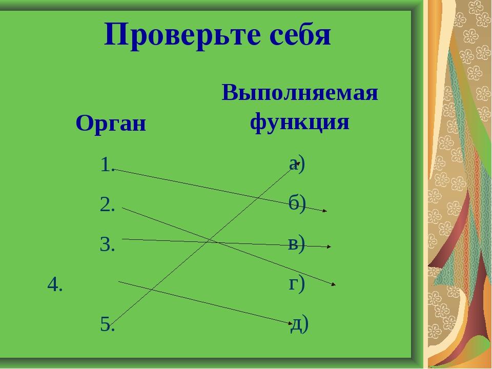 Орган 1. 2. 3. 4. 5. Выполняемая функция а) б) в) г) д) Проверьте себя