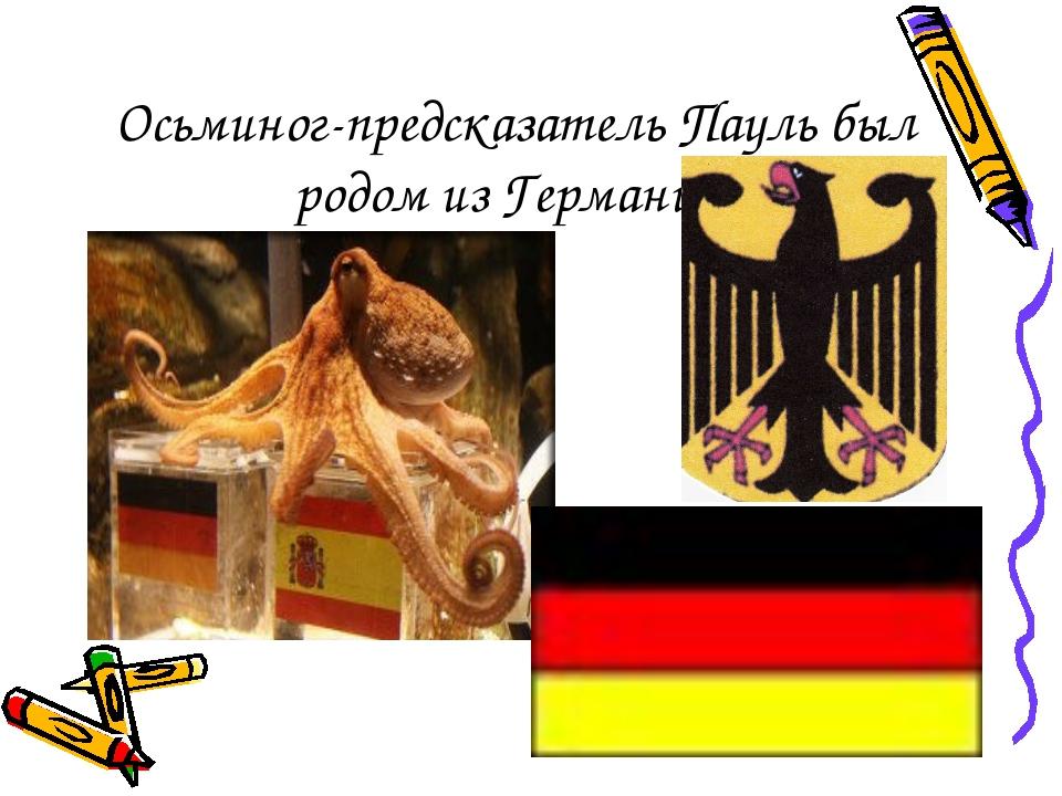 Осьминог-предсказатель Пауль был родом из Германии.