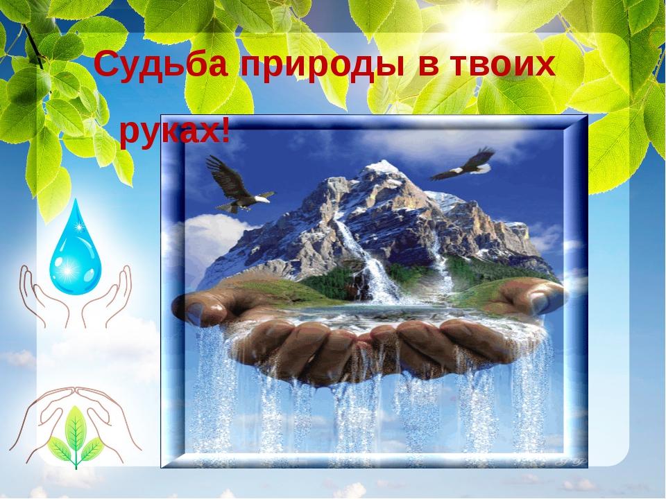 Судьба природы в твоих руках!