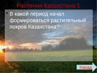 Физико-географические территории Казахстана 3 В каком месторождение и в какой