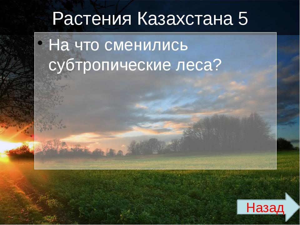 Растения Казахстана 4 В какую флору входит: эфемер, люцерна? Назад