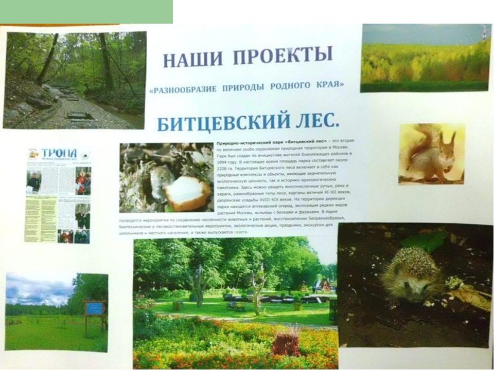 окружающий мир 3 проект разнообразия природы родного края решебник