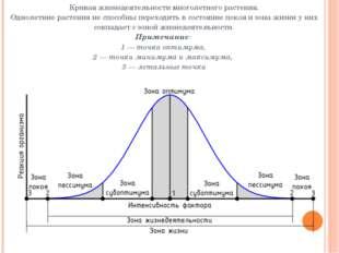 Кривая жизнедеятельностимноголетнего растения. Однолетние растенияне способ