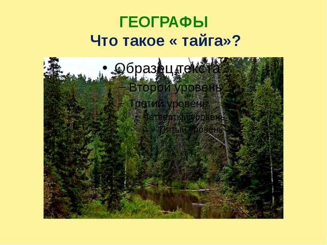 ГЕОГРАФЫ Что такое « тайга»?