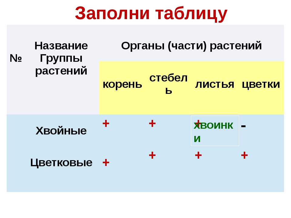 Заполни таблицу хвоинки № Название Группы растений Органы (части) растений к...