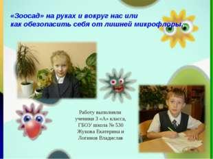 + Работу выполняли ученики 3 «А» класса, ГБОУ школа № 530 Жукова Екатерина и