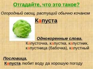 Отгадайте, что это такое? Огородный овощ, растущий обычно кочаном Капуста Одн