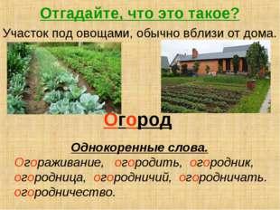 Отгадайте, что это такое? Участок под овощами, обычно вблизи от дома. Огород