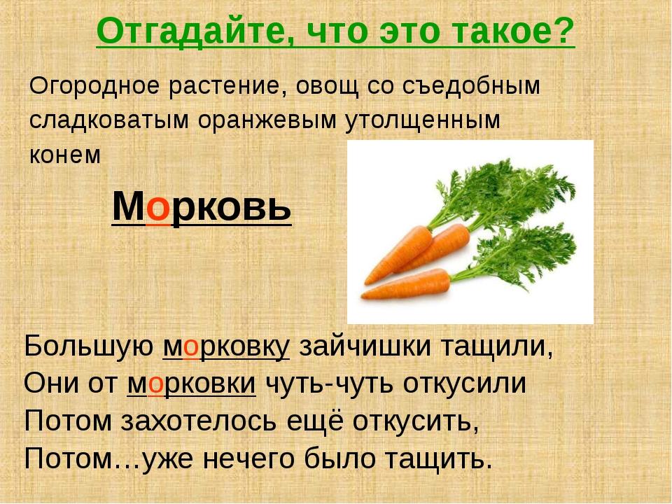 Отгадайте, что это такое? Огородное растение, овощ со съедобным сладковатым о...