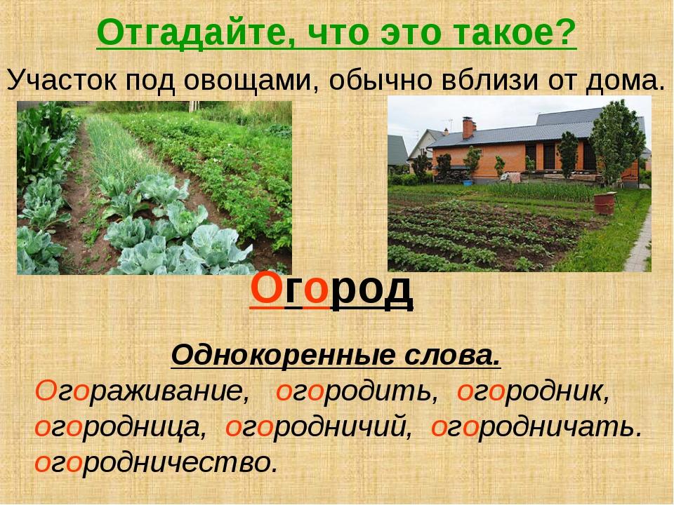 Отгадайте, что это такое? Участок под овощами, обычно вблизи от дома. Огород...
