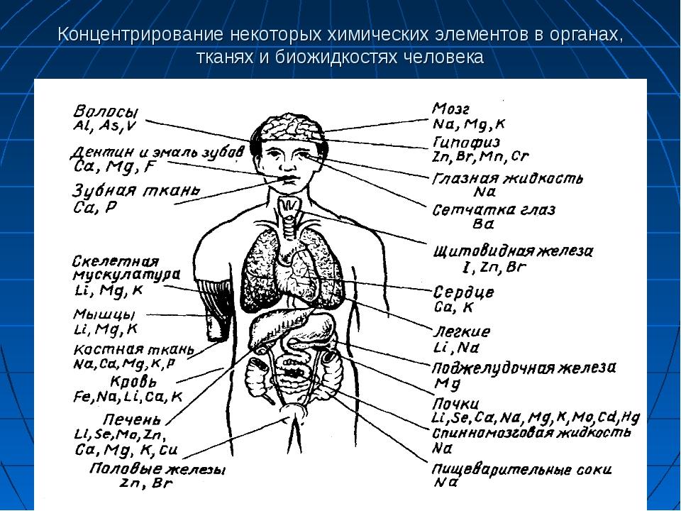 Концентрирование некоторых химических элементов в органах, тканях и биожидкос...