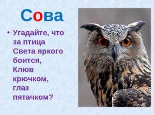 Сова Угадайте, что за птица Света яркого боится, Клюв крючком, глаз пятачком?
