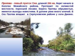 Протва - левый приток Оки, длиной 286 км, берет начало в болотах Можайского р