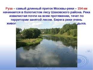 Руза – самый длинный приток Москвы-реки – 154 км начинается в болотистом лес