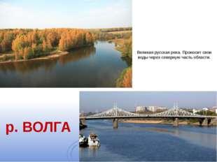 Великая русская река. Проносит свои воды через северную часть области. р. ВОЛГА
