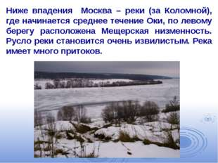 Ниже впадения Москва – реки (за Коломной), где начинается среднее течение Оки
