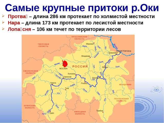 Самые крупные притоки р.Оки Протва́– длина 286 км протекает по холмистой мес...