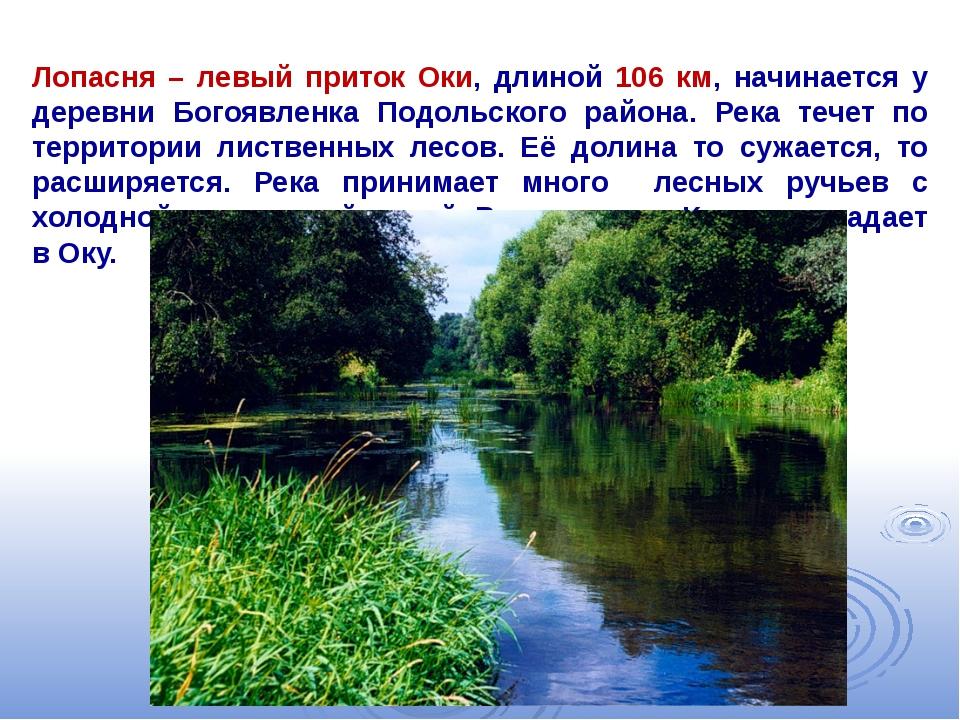Лопасня – левый приток Оки, длиной 106 км, начинается у деревни Богоявленка П...