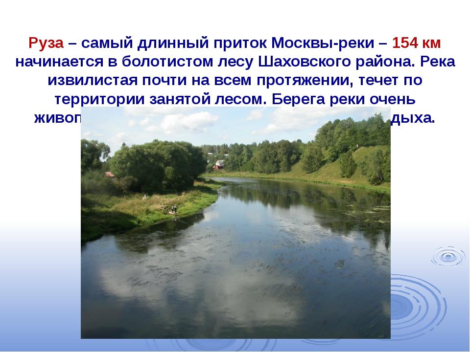 Руза – самый длинный приток Москвы-реки – 154 км начинается в болотистом лес...