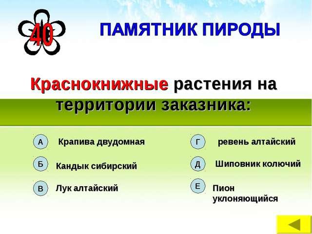 Краснокнижные растения на территории заказника: