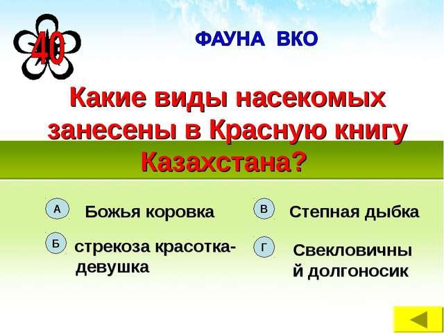 Какие виды насекомых занесены в Красную книгу Казахстана?