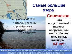 Самые большие озера Более обширные, но неглубокие озера прячутся среди болот