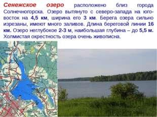Сенежское озеро расположено близ города Солнечногорска. Озеро вытянуто с севе