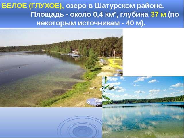 БЕЛОЕ (ГЛУХОЕ), озеро в Шатурском районе. Площадь - около 0,4 км², глубина 37...