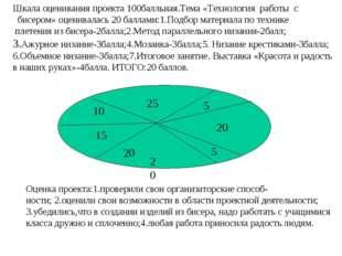 20 20 20 25 15 10 5 5 Оценка проекта:1.проверили свои организаторские способ-