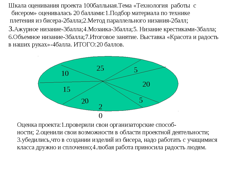 20 20 20 25 15 10 5 5 Оценка проекта:1.проверили свои организаторские способ-...