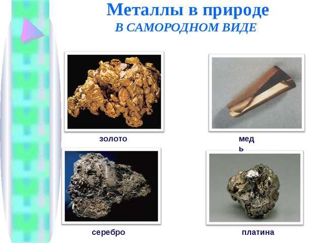 Металлы в природе В САМОРОДНОМ ВИДЕ золото серебро медь платина