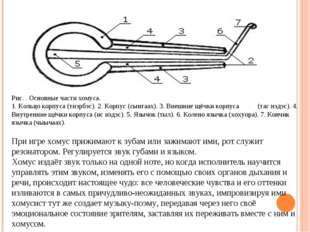 Рис. . Основные части хомуса. 1. Кольцо корпуса (тиэрбэс). 2. Корпус (сынгаах