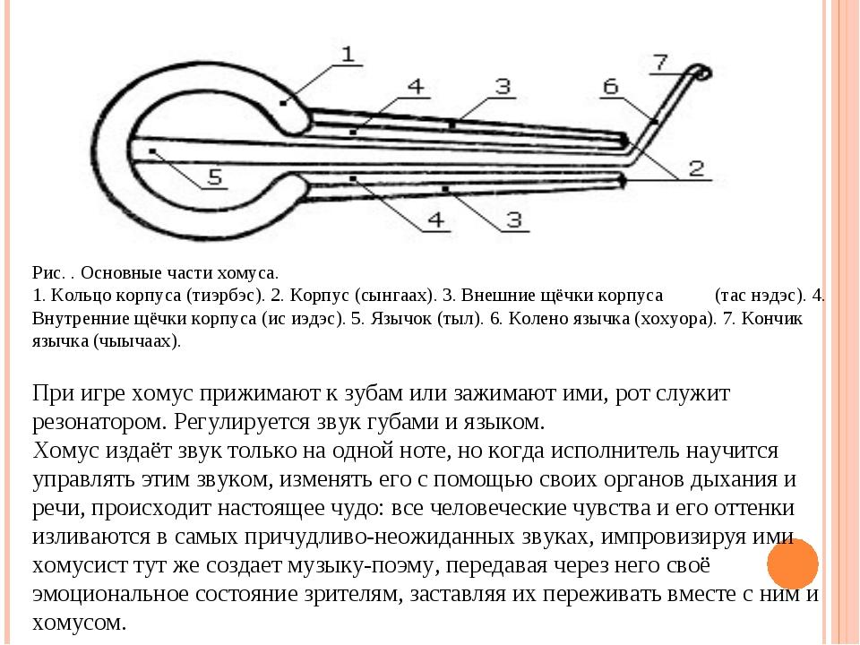 Рис. . Основные части хомуса. 1. Кольцо корпуса (тиэрбэс). 2. Корпус (сынгаах...