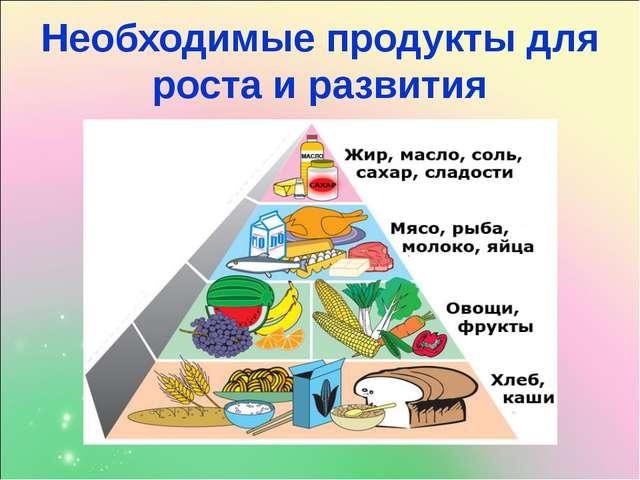 Необходимые продукты для роста и развития