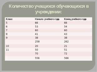 Количество учащихся обучающихся в учреждении: Класс Начало учебного года Коне