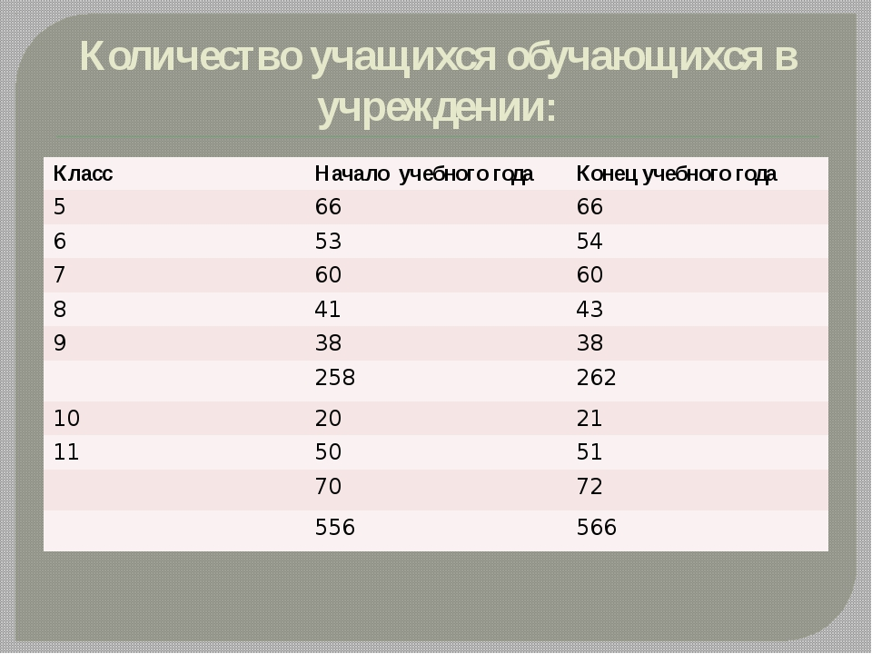 Количество учащихся обучающихся в учреждении: Класс Начало учебного года Коне...