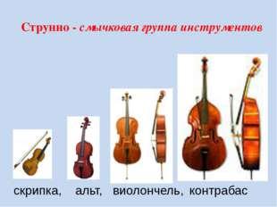 Струнно - смычковая группа инструментов скрипка, альт, виолончель, контрабас