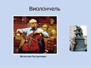 Виолончель Мстислав Растропович Фото виолончелиста Мстислава Растраповича