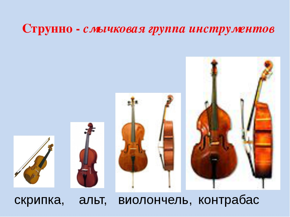 Струнно - смычковая группа инструментов скрипка, альт, виолончель, контрабас...