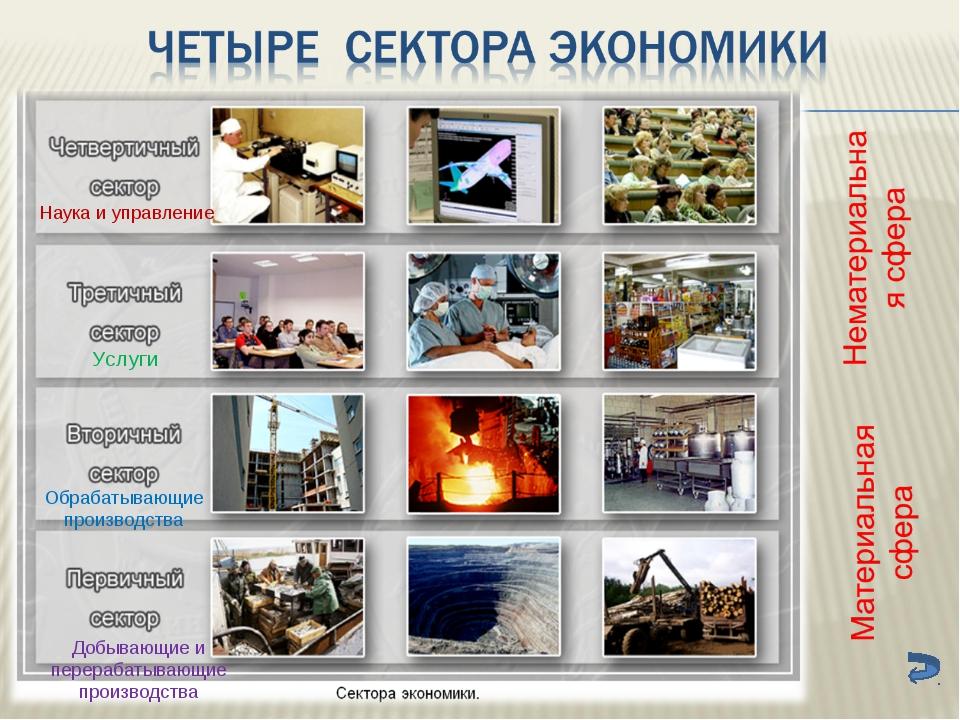 Наука и управление Услуги Обрабатывающие производства Добывающие и перерабаты...