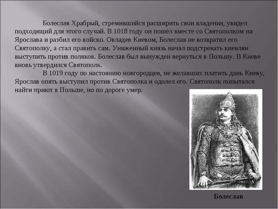 Болеслав Храбрый, стремившийся расширить свои владения, увидел подходящий дл...