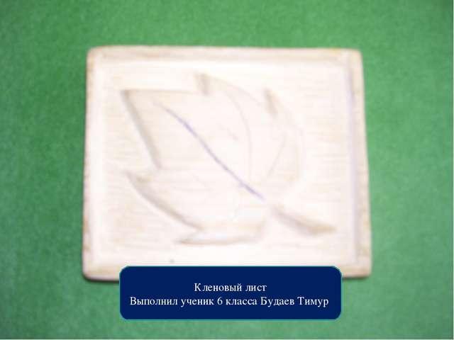 Кленовый лист Выполнил ученик 6 класса Будаев Тимур