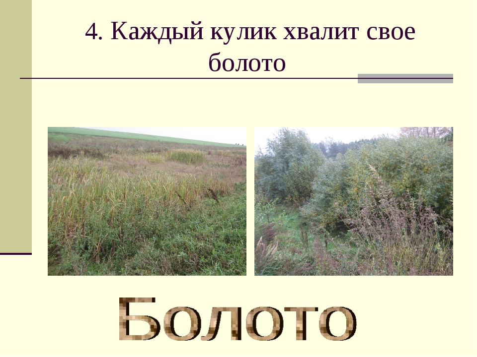 4. Каждый кулик хвалит свое болото
