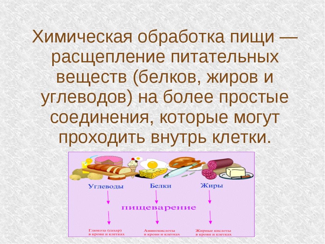Химическая обработка пищи — расщепление питательных веществ (белков, жиров и...