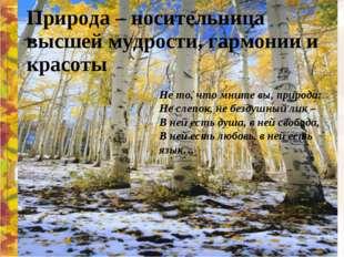 Природа – носительница высшей мудрости, гармонии и красоты Не то, что мните в
