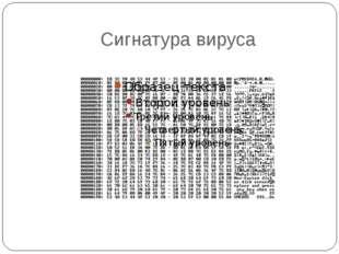 Сигнатура вируса