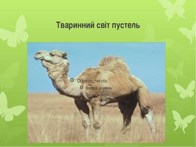 Тваринний світ пустель